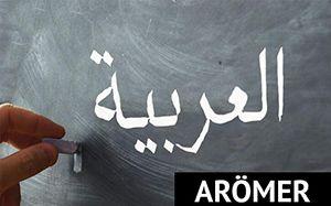 İstanbul 29 Mayıs Üniversitesi Arapça Öğretimi Uygulama ve Araştırma Merkezi